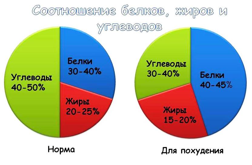 подсчет в процентах