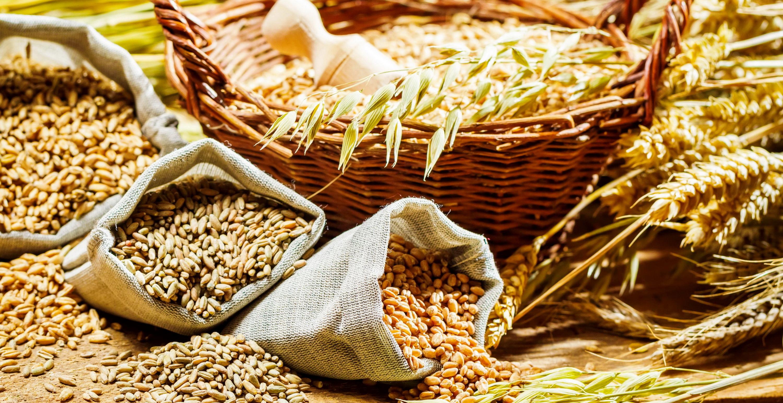 продукты способствующие сжиганию жира и похудению
