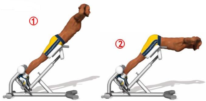 Упражнения на дельты тренируем передние средние и задние