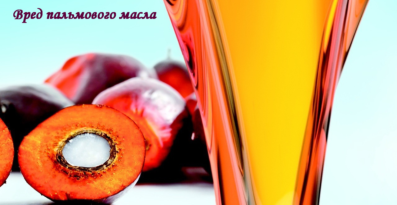 palmovoe-maslo-v-detskom-pitanii-i-palmovyj-olein-10
