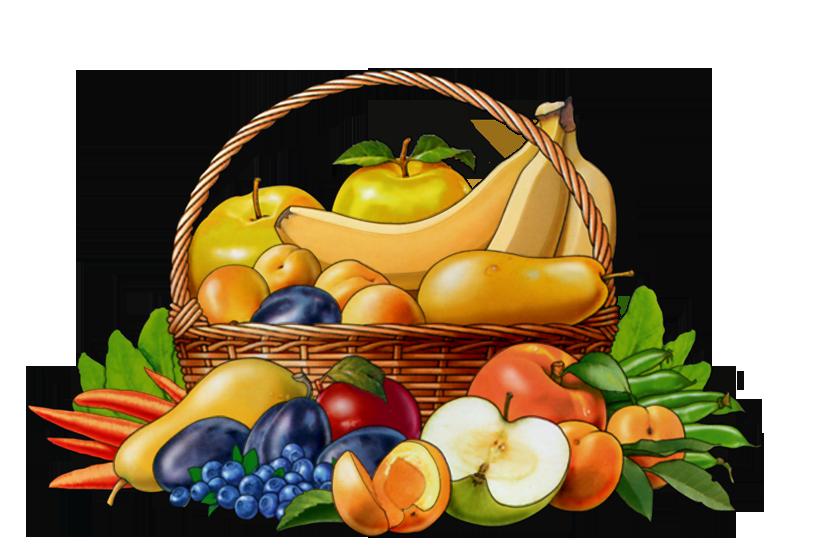 frukty-i-ovoshchi