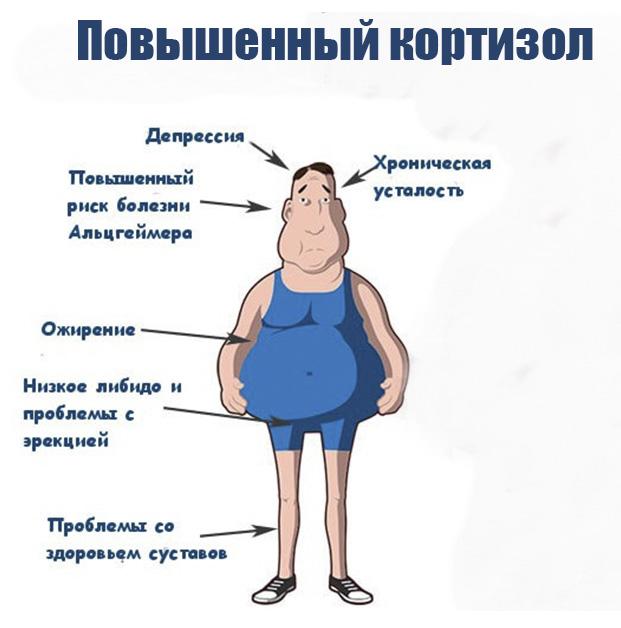 povyshenniy-kortizol